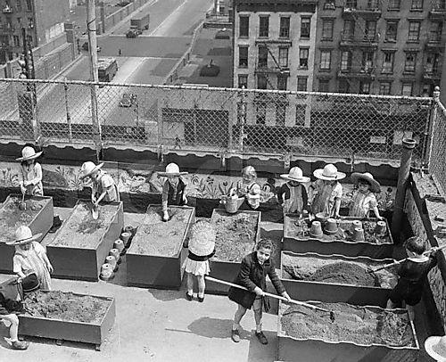 Kids-rooftop-garden
