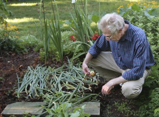 Gardenleadtesting