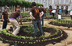 San Fran garden-3-1