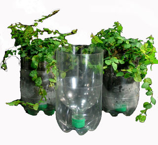 Clear_recycle_bottle_planters-600x550-1