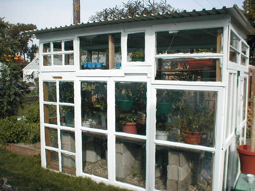 WindowsGreenhouse