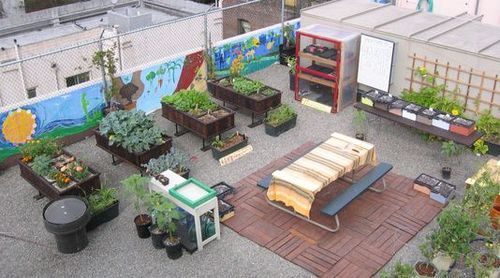 Inside Urban Green Modern Age Rooftop Vegetable Gardens