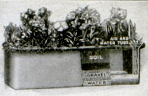 SIP_1924