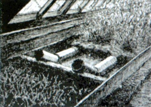 Sub-irrigationLHBailey-2