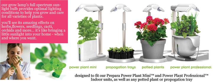 Prepara-power-plant-lamp