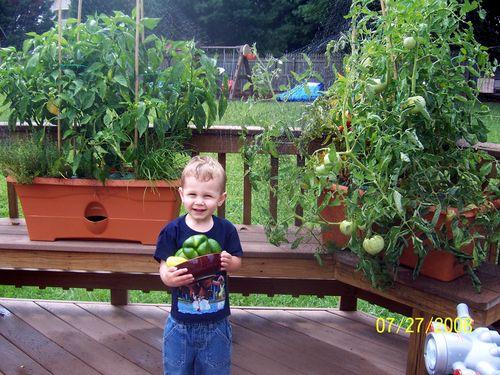 GardenPatchGrowBoxManassas VA