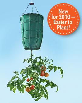 HangingTomato Planter -1