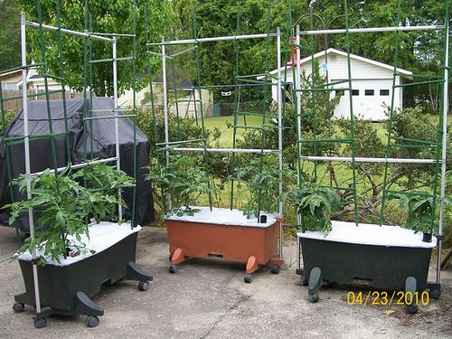 Note That These EarthBoxes Are On A Concrete Patio Even With A Large Lawn  Available. The Upside Is That The Tomatoes Will Be In Easy Reach And The  Planters ...