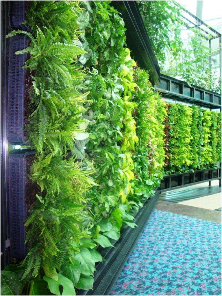 inside urban green  diy living wall
