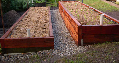 Wicking-Beds.jpg