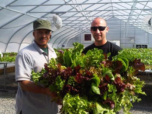 GSUFWalter&Lettuce