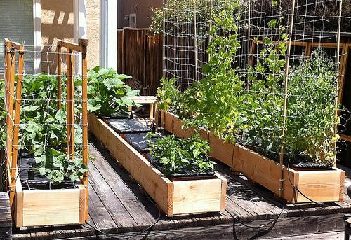 Inside Urban Green A Well Engineered Backyard Portable