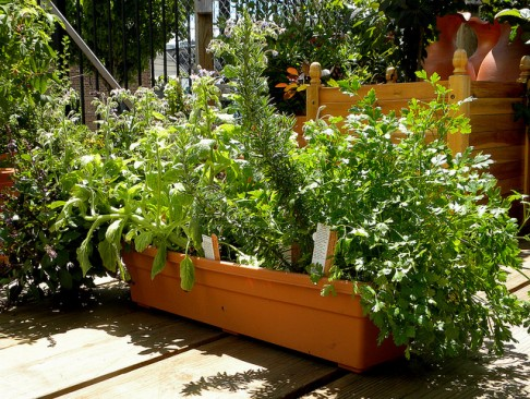 Genial More Sub Irrigated Window Box Micro Gardens