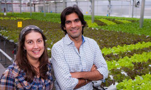 Jennifer-nelkin-viraj-puri-hydroponic-rooftop-farm-dave-mosher