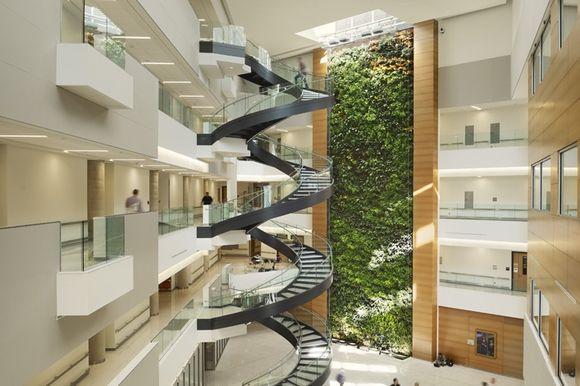 Inside Urban Green Living Walls