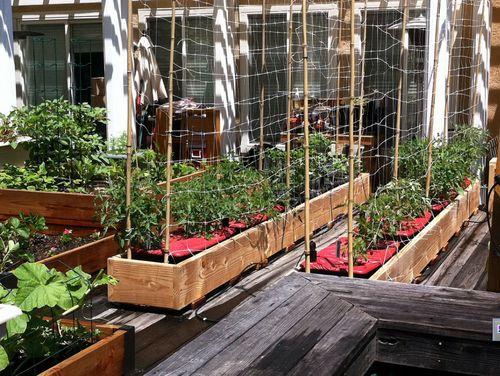 Inside Urban Green A Rain Gutter Go Anywhere Micro Farm